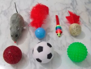 kit-de-brinquedos-para-gatos-com-7-itens-_MLB-F-3015589004_082012
